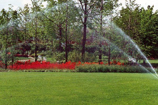 Il giardino ha sete